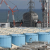(海外反応) 日本、福島汚染水の海洋放出方針を固める13日発表(詳報)