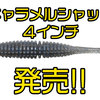 【一誠】強力なウォブリングを発生させるシャッドテールワームに新サイズ「キャラメルシャッド4インチ」発売!