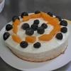 マンゴーレアチーズケーキアイス