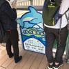 【イルカが川で泳いでる⁈】「かごしま水族館」は桜島フェリーの出口にある観光スポットなので、「桜島観光」とセットで行動するのがおススメです!