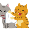 愛猫とのシャンプー闘争の終焉!ドライシャンプーの解説とおすすめ