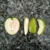 インドの果物 ~BER~
