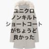 【ユニクロ】男だけど、ノンキルトダウンショートコートがちょうど良かった!