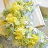 春のお花の香りっていい匂い~♡