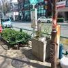 阿佐ヶ谷駅を降りて南へ、路上園芸と展示物の防火用水水槽