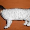 続・羊毛フェルトでうちの猫ちゃん❤その②