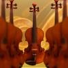 ヴァイオリン奏者としての活動。オーケストラの「エキストラ」は、ドラマの「エキストラ」とは全然扱いが違う