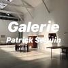 【GALERIE PATRICK SEGUIN】パリの世界的に有名なギャラリー