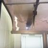 DIY!! 掃除してたら カーポート屋根が割れている 犯人は誰!!