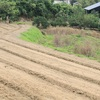 農家住宅の佇まい…