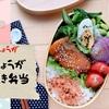 3Sソースにおろしショウガを加えるだけ。簡単・鮭のしょうが照り焼き弁当の作り方