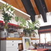 みんなでフレンチランチ会 神戸三ノ宮の地鶏料理店は安東