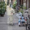 懐かしの白ネコがスマホに現れる『トロとパズル~どこでもいっしょ~』発表