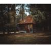 大きな森の小さな家