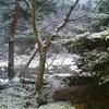 鬼怒川温泉はつまらない? さびれた鬼怒川温泉の知られざる真の魅力とは?