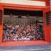 和歌山市加太【淡嶋神社】境内に所狭しと置かれた供養人形の数々【本殿に並ぶ雛人形】