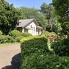 小石川植物園18