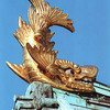 城の上についている金鯱の鯱は、想像上の生き物で、あのシャチではない