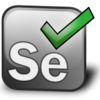 Selenium2を3に上げてみる