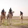 【後編】スーダンの首都ハルツームを半日観光するなら、こんなところ!