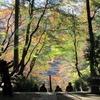 遠州三山や香嵐渓 ちょっと残念 紅葉めぐり(3の2)