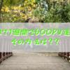【祝!】ブログ開始1週間で、600pv超えました!その方法をまとめるよ!【新人ブロガー必見】→10日で1000pv超えました!