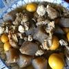 煮込みたまひもとコンニャクで、簡単に栄養補給。簡単レシピ付き。