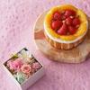 小樽洋菓子【LeTAO(ルタオ)】でおトクにお買い物!ポイントサイト経由!