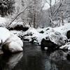 テンカラ釣行記:2017年3月末の裾花川支流にて