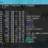 Bash on Windows上のファイルをうっかりWindows側でいじってしまったときの対処