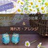 【カフェインレス】カモミールティーの効果効能&おすすめの入れ方!美味しくアレンジ