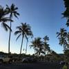 ハワイで朝散歩