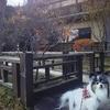 川場村にある「蕎麦 和太奈部」でランチ