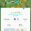 【ポケモンGo】雑記 コミュニティ・デイは疲れる