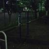 馬込西公園で懸垂 その11