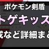 【ポケモン剣盾】トゲキッス育成論・厳選・対策【出現場所・入手方法】