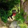 【FUJIFILM X100F作例】ソロ山寺と仏像と猫