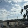 川内からの帰りに寄った道の駅「みなまた」のバラ園と、角煮の大きさに驚くラーメン 11月4日