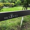 ハルニレテラス☆軽井沢おすすめ観光スポット2020