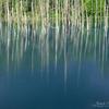 パステル「青い池」