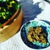 春の便り『台所薬膳🌱🌱』