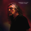 "Robert Plant ""Bluebirds Over The Mountain"" 和訳"