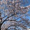 春ウキウキ