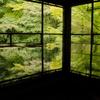 10/24-26 近畿旅行1/3日目:京都(瑠璃光院、蓮華寺)