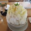 【奈良かき氷】 京終駅舎カフェ ハテノミドリ さん