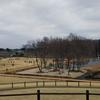 【ベスト5】ランニングにおすすめな栃木県の公園