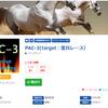 【12月実検証まとめ】競馬予想のレジまぐで驚異のコンテンツ!2019年12月回収率305%、的中率60%!PAC-3(target:重賞レース)