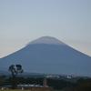 富士山と百日草