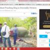 ミャンマー当局が象さんの密猟は許さんゾウ・・と張り切るなかで、ブッシュミート問題も透けてきた