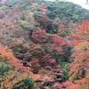 【大阪】箕面の滝で龍安寺